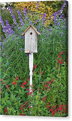 Birdhouse In A Garden With Mexican Bush Canvas Print by Panoramic Images