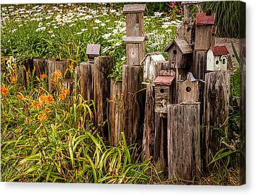 Birdhouses Beside A Country Road Canvas Print