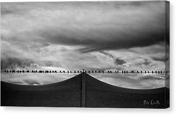 Birds Canvas Print by Bob Orsillo