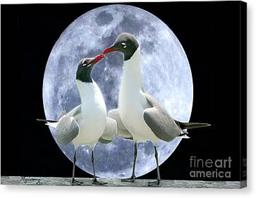 Canvas Print featuring the photograph Birds Do It... by Mariarosa Rockefeller