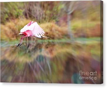 Digital Touch Canvas Print - Birds Eye View by Carol Groenen