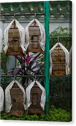Birds In Cages For Sale At A Bird Canvas Print