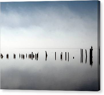 Birds In Fog Canvas Print by John Bushnell