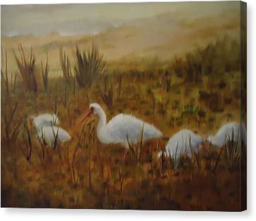 Birds In The Marshes Canvas Print by Betty Pimm