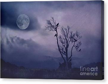 Birds In The Night Canvas Print by Darren Fisher