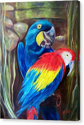 Bird's Of A Feather, Macaws Canvas Print