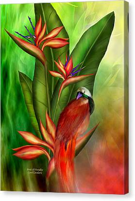 Birds Of Paradise Canvas Print by Carol Cavalaris