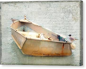 Birds On A Boat In The Basin Canvas Print by Karen Lynch