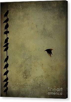 Birds On A Wire 2 Canvas Print by Jim Wright