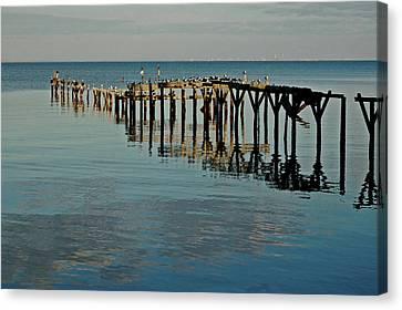 Birds On Old Dock On The Bay Canvas Print by Michael Thomas