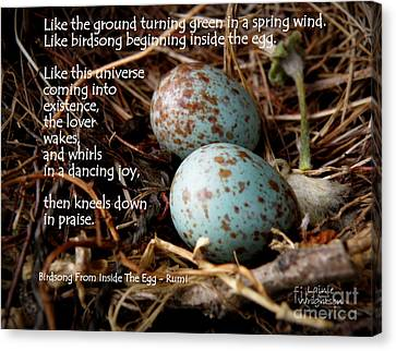 Birdsong From Inside The Egg Canvas Print by Lainie Wrightson