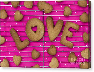 Stainless Steel Canvas Print - Biscuit Love by Tim Gainey