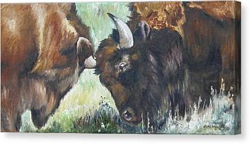 Canvas Print featuring the painting Bison Brawl by Lori Brackett