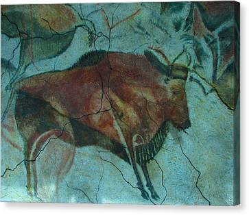 Bison Buffalo Canvas Print by Unknown