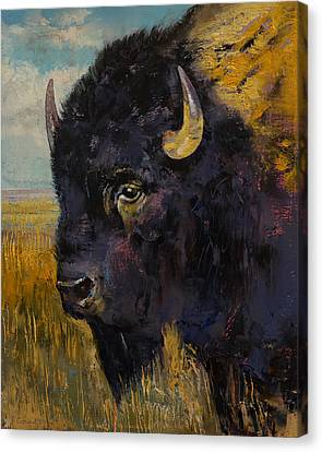 Bison Canvas Print by Michael Creese