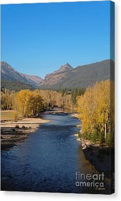 Bitterroot River Fall Canvas Print