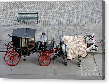 Canvas Print featuring the photograph Black And Red Horse Carriage - Vienna Austria  by Imran Ahmed