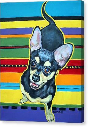 Black And Tan Chihuahua - Serape Canvas Print by Rebecca Korpita