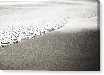 Water's Edge Canvas Print