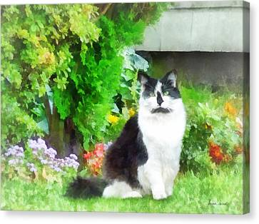Black And White Cat By Flowers Canvas Print by Susan Savad