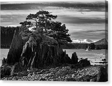 Black And White Of A Salmon Seiner Canvas Print
