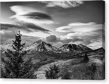 Black And White Photo Of Lenticular Canvas Print
