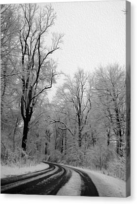 Black And White Road Canvas Print by Tracy Winter