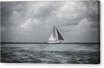 Black And White Sail Boat Canvas Print by Kristina Deane