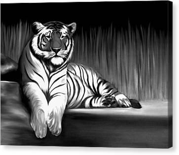 Black And White Tiger Canvas Print by Xafira Mendonsa