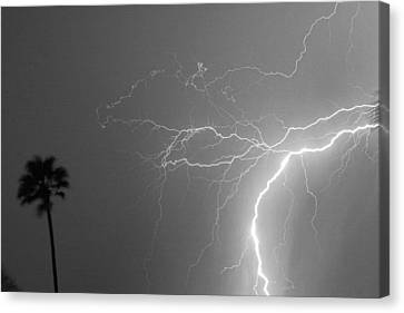 Black And White Tropical Thunderstorm Night  Canvas Print by James BO  Insogna