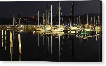 Black As Night Canvas Print by Frozen in Time Fine Art Photography