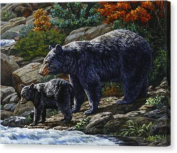 Black Bear Falls - Detail Canvas Print by Crista Forest