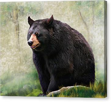 Canvas Print featuring the painting Black Bear by Mary Almond