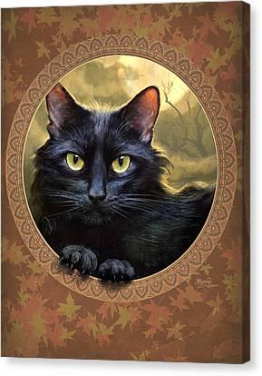 Black Cat Autumn Canvas Print by Jeff Haynie