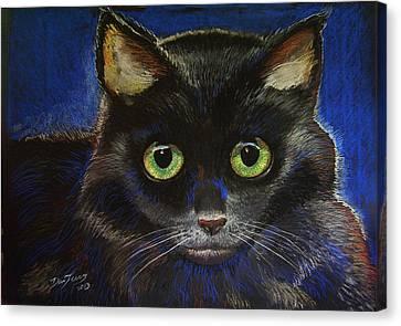 Black Cat Canvas Print by Dan Terry