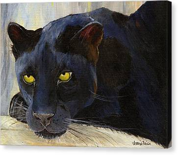 Black Cat Canvas Print by Jamie Frier