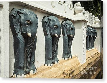 Black Elephants On Temple Wall Canvas Print by Patricia Hofmeester