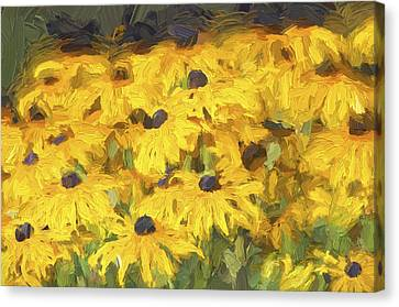 Black Eyed Susans Digital Oil Painting 2 Canvas Print by Sharon Talson