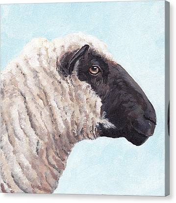 Black Face Sheep Canvas Print by Charlotte Yealey