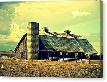Black Forest Road Barn Canvas Print by Antonia Citrino