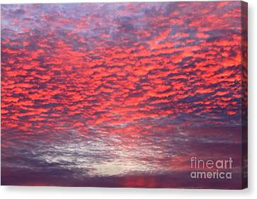 Black Friday Sunrise Canvas Print