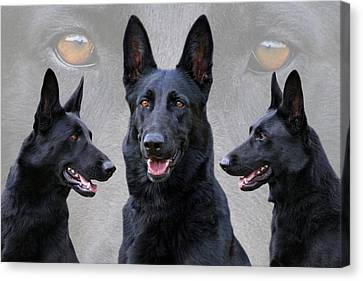 Black German Shepherd Dog Collage Canvas Print