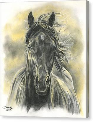Running Horses Canvas Print - Black Gold by Jana Goode