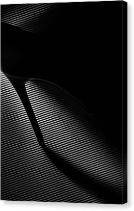 Black Heel Down Canvas Print by Erik Schottstaedt