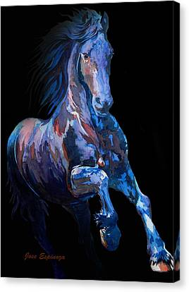 Black Horse In Black Canvas Print