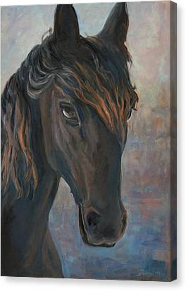 Black Horse Canvas Print by Marco Busoni