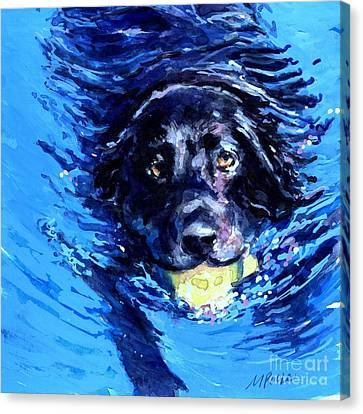 Black Lab  Blue Wake Canvas Print by Molly Poole