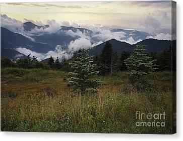 Black Mountains 2 Canvas Print