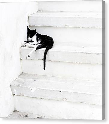 Black On White 2 Canvas Print