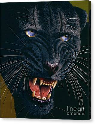 Black Panther 2 Canvas Print by Jurek Zamoyski
